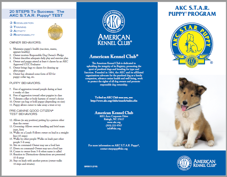 AKC STAR Puppy Brochure